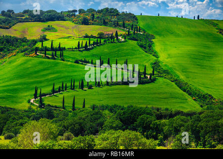 Wonderful travel and photography destination in Tuscany. Famous winding rural road near Montepulciano, Tuscany, Italy, Europe - Stock Photo