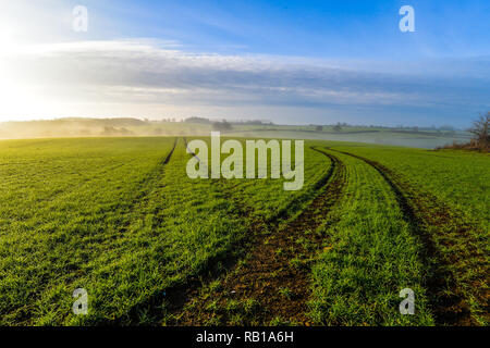 A rural scene in Northamptonshire - Woodend, UK - Stock Photo