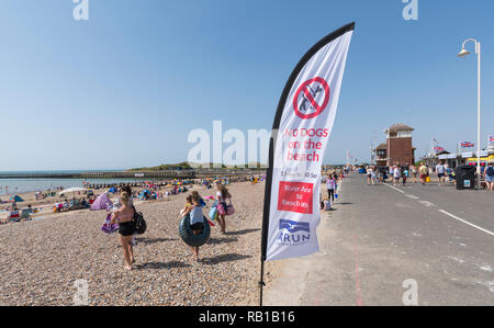A flag flying warning that dogs are not allowed on the beach, on the seafront promenade in Summer in Littlehampton, West Sussex, England, UK. - Stock Photo