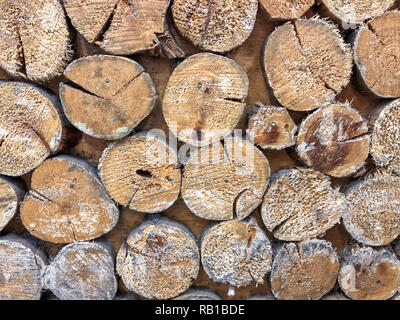 A front view of a brown textured wooden wall with many trunks stuck vertically in it - Stock Photo