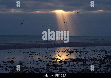 Sun shines through a gap in the clouds onto a beach at sunset. Sea birds fly across the landscape.