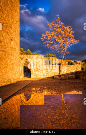 A moody autumnal scene with a golden tree next to a stone wall and doorway from a castle and dark grey and blue clouds above with reflection in water - Stock Photo