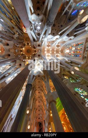 Innenansicht, Deckengewölbe Sagrada Familia, Barcelona, Spanien - Stock Photo