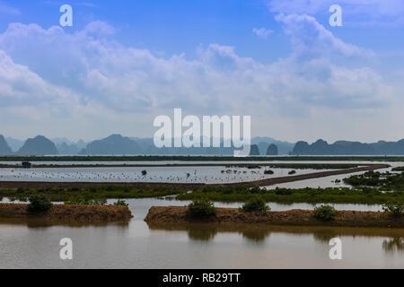 Oyster farm Halong Bay - Stock Photo