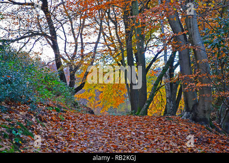 The Mariners Hill loop path, by Chartwell, Kent, Engand. On the Greensand Way of the North Downs and overlooks Winston Churchill's House. Autumn - Stock Photo