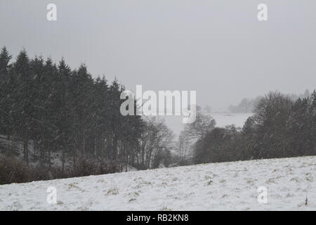 Late winter snow on a popular walk through Squerryes Park between Westerham, Hosey Common and Chartwell in Kent. March 2018 - Stock Photo