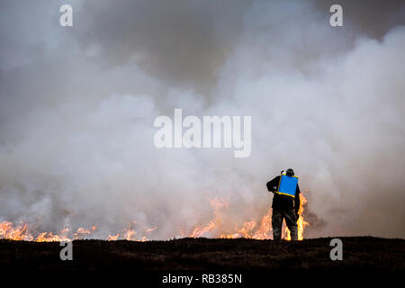 Heather moorland burning in small areas of the Pennine moors on a rotational basis in the winter months to create a habitat for grouse for shooting. - Stock Photo