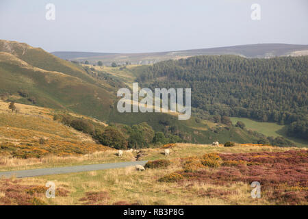 Horseshoe Pass, popular with hikers, near Llangollen, Denbighshire, North Wales, Wales, United Kingdom - Stock Photo