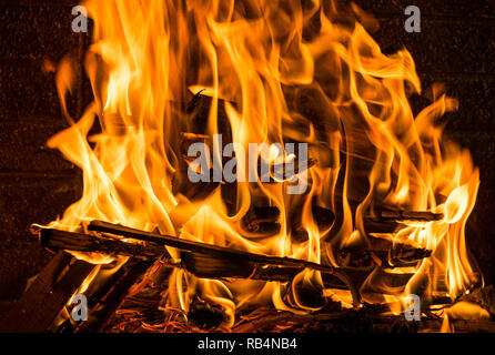 Burning firewood in the fireplace close up, BBQ fire, charcoal background - Stock Photo