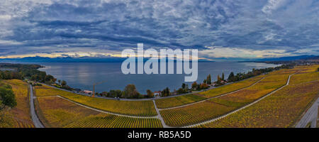 Panoramic view of the vineyard of Dully on the shore of Lake Geneva under a dramatic autumn sky in an aerial photography made by a drone - Stock Photo