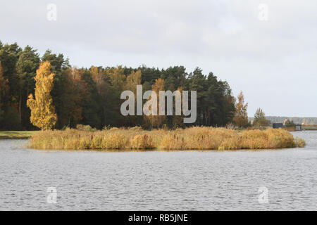 Beautiful early autumn view of amazing park trees near water. Landscape located in countryside, Latvia - Europe. - Stock Photo
