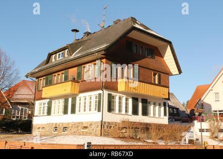 Winter am Titisee im Schwarzwald