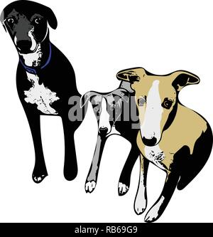Colour vector graphic of three dogs sitting patiently side-by-side. - Stock Photo