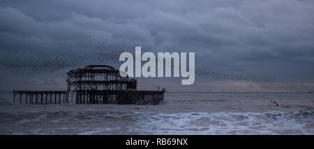 Murmuration of starlings over West Pier, Brighton, East Sussex, UK. Photographed at dusk on a cold, calm winter's day. - Stock Photo