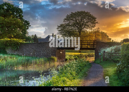 UK Weather - After a night of heavy showers, the sun rises behind Ayshford Brige on the Great Western Canal near Samford Peverell in Devon. - Stock Photo