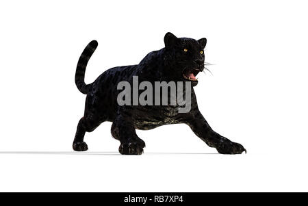 3d Illustration Black Panther Isolate on White Background with Clipping Path, Black Tiger - Stock Photo