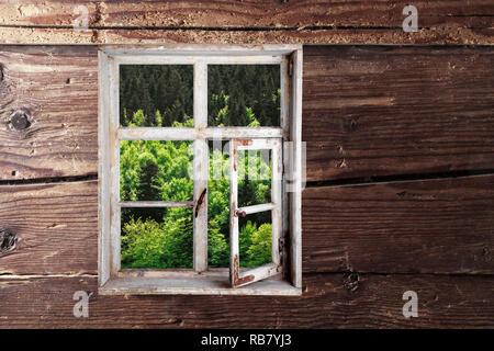 Blick aus dem Fenster - Stock Photo