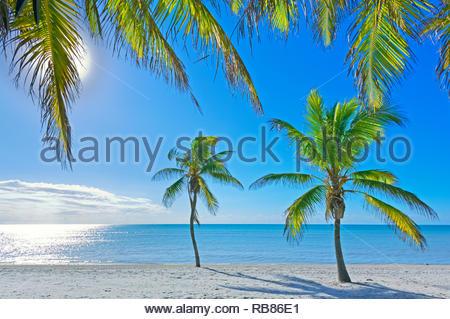 Tropical beach, Key West, Florida, USA - Stock Photo