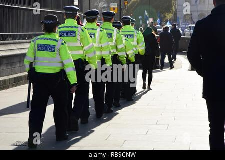 London, UK. 8th Jan, 2019. Police numbers were increased today following complaints that the police should have done more to protect Anna Soubry MP from Pro Brexit abusers.Houses of Parliament, Westminster, London.UK Credit: michael melia/Alamy Live News - Stock Photo