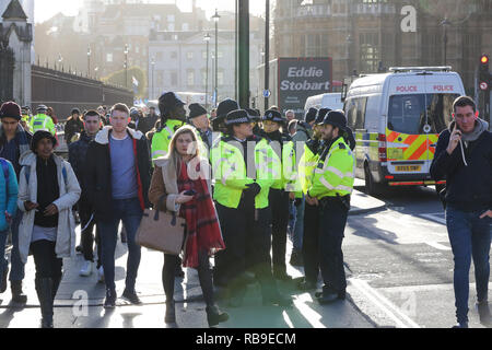 London, UK. 8th Jan, 2019. Extras police officers seen outside the House of Parliament in Westminster.Anti-Brexit demonstrators gather outside the British Parliament a week before the MPs to vote on the finalized Brexit deal, MPs will vote on Theresa May's Brexit deal on 15 January. Credit: Dinendra Haria/SOPA Images/ZUMA Wire/Alamy Live News - Stock Photo