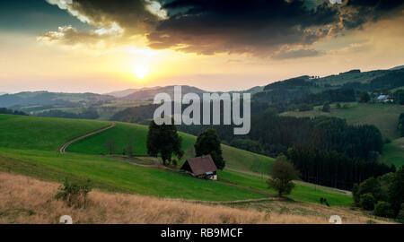 Landschaft im Schwarzwald - Stock Photo