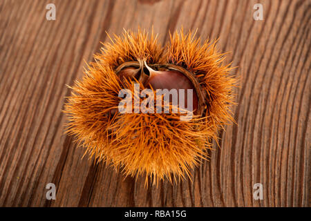 Fresh sweet chestnuts in the shell  on a table - Stock Photo