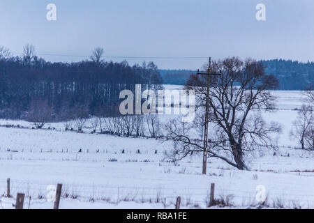 The snow covered the fields and meadows. Trees in the foreground and dark forest in the background. The beginning of winter in Europe. - Stock Photo