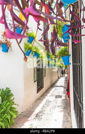 Tourists in the old alley of Calleja De Las Flores, Cordoba, Andalusia, Spain Stock Photo