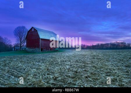 Pre-Sunrise Glory on the Farm - Stock Photo