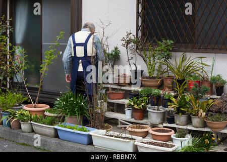 Elderly man in Tokyo tending plants outside an apartment - Stock Photo