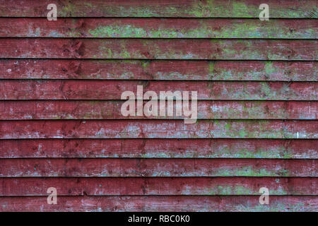 Grunge old red wooden fence with green moss patterns - high quality texture / background - Stock Photo