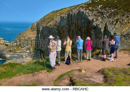 A group of Ornithologists birdwatching on RSPB South Stack island in Anglesey North Wales UK - Stock Photo
