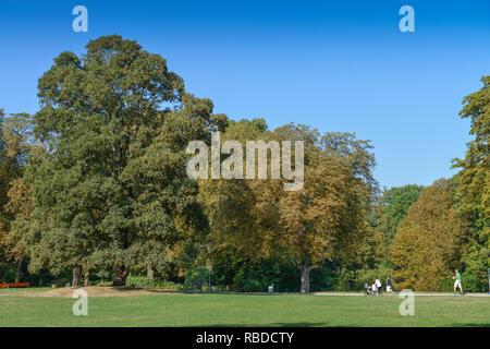 West park, Aachen, North Rhine-Westphalia, Germany, Westpark, Nordrhein-Westfalen, Deutschland - Stock Photo