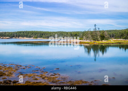 Little Moose Island in Acadia National Park at Schoodic Peninsula - Stock Photo