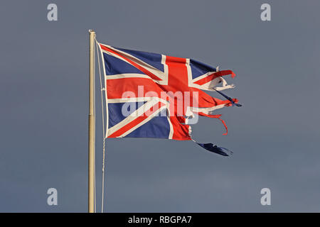 British flag or Union Jack torn and tattered flying in the winter by the sea in Italy representing the disaster of Brexit - Stock Photo