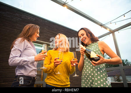 Group of partying girls with flutes with sparkling wine having fun on the party - Stock Photo