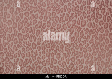Leopard wild animal pattern background or texture, wallpaper concept colorful filter - Stock Photo