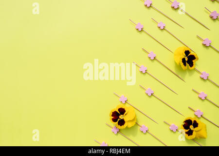 Pansy yellow with Skewers for the preparation of canapes. Props for snack on yellow background.Flat lay, top view.Flowers composition. Frame made of colorful flowers.Viola tricolor pansy.heartsease.Copy space - Stock Photo