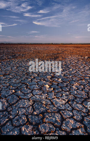 Mud tiles fill the surface of Sarigua Desert in Panama - Stock Photo
