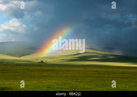 Rainbow over the savannah in Ngorongoro Crater, Tanzania - Stock Photo