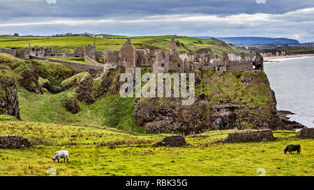 The Dunluce Castle in County Antrim Northern Ireland. The Medieval Castle is presented as the Greyjoy Castle in the the Game of Thrones. - Stock Photo