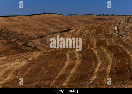 The Crete, Tuscany, Italy: harvest patterns in wheatfield stubble of the Crete Senesi, near Siena, a clay 'lunar landscape' caused by water erosion. - Stock Photo