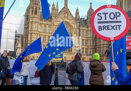 London, UK. 11th Jan, 2019. Anti Brexit campaigners outside the Houses of Parliament in London today as the debate continues on Prime Minister Theresa May's deal which is to be voted on next week . Credit: Simon Dack/Alamy Live News - Stock Photo