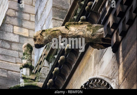 Gothic gargoyles covered in moss on the facade of the famous Notre Dame de Paris Cathedral in Paris, France with rain drops falling down - Stock Photo