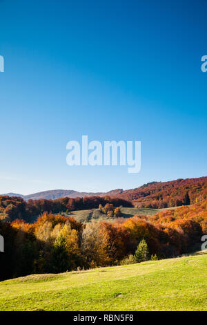 Great alpine valley that glows in the sunlight. Gorgeous morning scene. Red and yellow autumn leaves. Location place Carpathians, Ukraine, Europe. Dis - Stock Photo