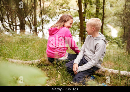 Brother and sister sitting together on a fallen tree in a forest, selective view - Stock Photo