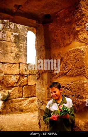 Baptister of Saint Simeon citadelle. Qa´laat Samaan. Syria, Middle East - Stock Photo
