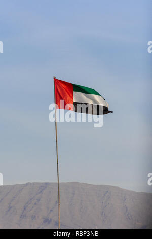 UAE flag blowing in the wind with a blue sky background in the bright evening sunshine. - Stock Photo
