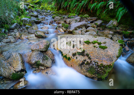 Natural fresh clean water flowing through and around granite bolders through lush green New Zealand bush. - Stock Photo