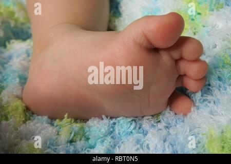 Close-up of Baby`s Foot on a Blue and Green Blanket - Stock Photo